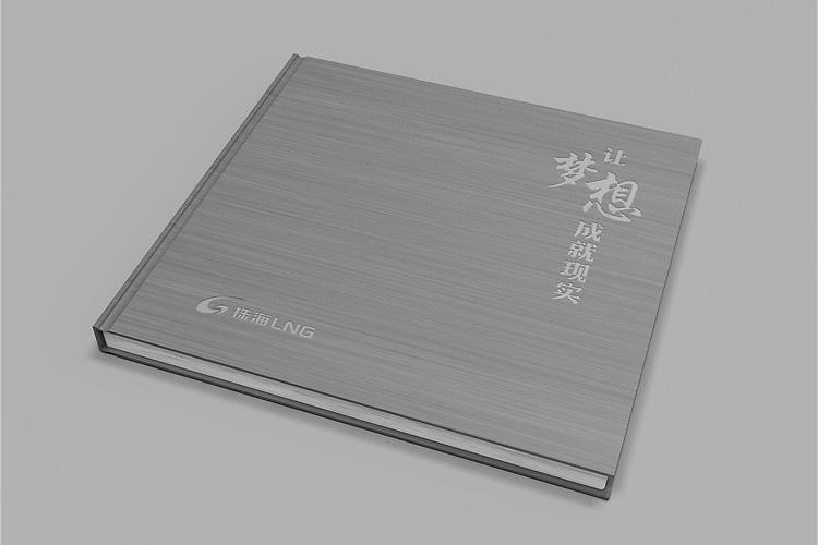 珠海LNG画册设计_全力设计
